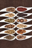 Kines Yang Herbs royaltyfri bild
