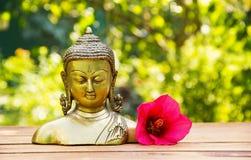 Kinesbuddha skulptur och rosa färghibiskusen blommar på grön naturlig bakgrund Tvål-, handduk- och blommasnowdrops Royaltyfria Bilder