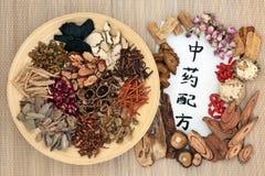 Kinesisk alternativ medicin Arkivbilder