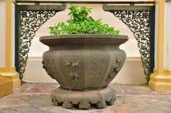 Kinesisk blomkruka med trevlig bakgrund. Royaltyfria Foton