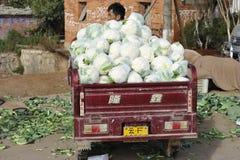 Kinesisk bonde som säljer grönsaker Royaltyfria Bilder