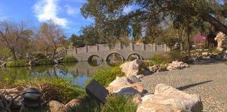 Kinesisk botanisk trädgård på den Huntington botaniska trädgården Royaltyfri Bild