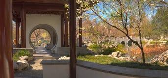 Kinesisk botanisk trädgård på den Huntington botaniska trädgården Fotografering för Bildbyråer