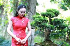 Kinesisk cheongsammodellställning bredvid bonsai Arkivfoton