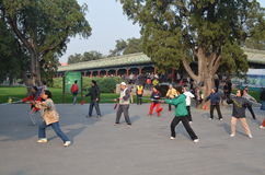 Kinesisk Chi boxning-Tai Fotografering för Bildbyråer