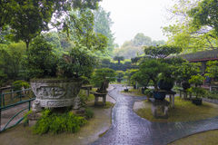 kinesisk classicträdgård royaltyfri bild