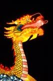 kinesisk drake Royaltyfri Fotografi