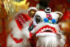 kinesisk drake Arkivbild