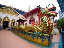 Kinesisk drake för guld- thailändsk drake på Wat Chaiyamangalaram Penang Malaysia Arkivbilder