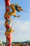 Kinesisk drake i relikskrinen Arkivbild