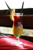 Kinesisk eller orientalisk drink Royaltyfria Bilder