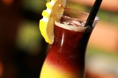 Kinesisk eller orientalisk drink Royaltyfria Foton