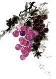 Kinesisk färgpulverhandmålning av druvor Arkivfoton