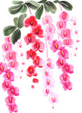 Kinesisk färgpulvermålning av orkidér Arkivbilder