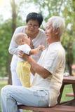 Kinesisk farfar och farmor Arkivfoton