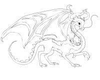 Kinesisk felik drake Arkivfoto