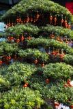 kinesisk festivalfjäder Träd- och kineslyktor Fotografering för Bildbyråer