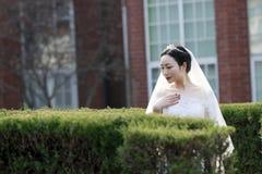 Kinesisk flickabrud i bröllopsklänning med en härlig imperialistisk kronaställning i buskarna Arkivfoto