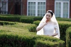 Kinesisk flickabrud i bröllopsklänning med en härlig imperialistisk kronaställning i buskarna Fotografering för Bildbyråer