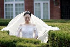 Kinesisk flickabrud i bröllopsklänning med en härlig imperialistisk kronaställning i buskarna Royaltyfri Bild
