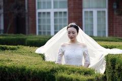 Kinesisk flickabrud i bröllopsklänning med en härlig imperialistisk kronaställning i buskarna Arkivbild