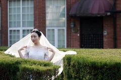 Kinesisk flickabrud i bröllopsklänning med en härlig imperialistisk kronaställning i buskarna Royaltyfri Foto
