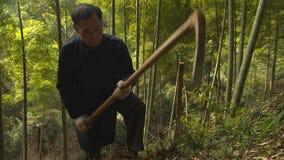 Kinesisk gamal man som finner och gräver manuellt bambuskott som växer i berg yunnan Kina royaltyfri fotografi