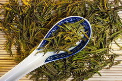 Kinesisk grön Tea Royaltyfria Foton