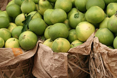 kinesisk grapefruktpomelo royaltyfri foto