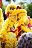 Kinesisk grundläggande förehavanden för lejondans kan finnas i kinesiska kampsporter Royaltyfri Bild