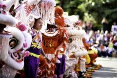Kinesisk grundläggande förehavanden för lejondans kan finnas i kinesiska kampsporter Arkivfoto