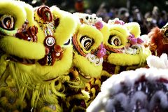 Kinesisk grundläggande förehavanden för lejondans kan finnas i kinesiska kampsporter Arkivfoton