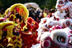 Kinesisk grundläggande förehavanden för lejondans kan finnas i kinesiska kampsporter Arkivbilder