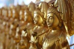 Kinesisk gudinna, Hatyai, Thailand Arkivfoto