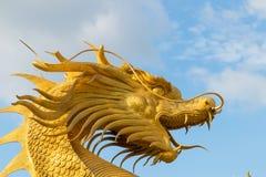 Kinesisk guld- drakestaty i bakgrunden av blå himmel arkivfoto