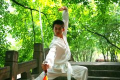 kinesisk kongfu fotografering för bildbyråer