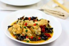 Kinesisk kryddig höna Fotografering för Bildbyråer