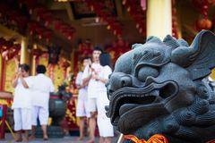 Kinesisk lejonstaty i Jiu Tean Geng Shrine, Phuket, Thailand royaltyfri bild