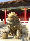 kinesisk lion Arkivbild