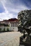 kinesisk lion Arkivfoton