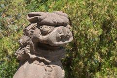 kinesisk lion Arkivfoto