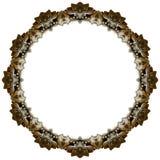 kinesisk lioncirkel Arkivfoto