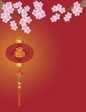 Kinesisk lykta- och Cherryblomningillustration royaltyfri illustrationer