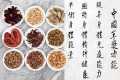 Kinesisk medicin Royaltyfri Bild