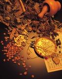 kinesisk medicin Arkivfoton