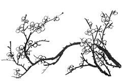 kinesisk målning Arkivbild