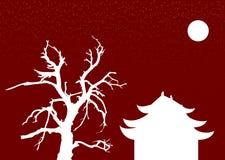 kinesisk natt Royaltyfri Fotografi