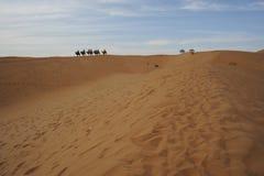 Kinesisk nordvästlig Tengger öken Arkivfoto
