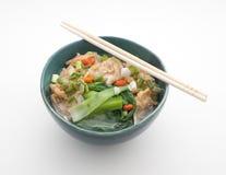 Kinesisk nudelsoppa med griskött och spenat royaltyfri foto