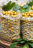 Kinesisk oliver rea Royaltyfri Fotografi